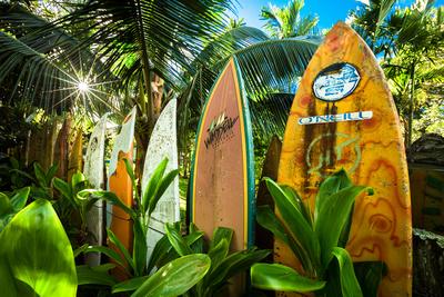 """""""Hawaiian Picket Fence"""" - Paia, Maui"""