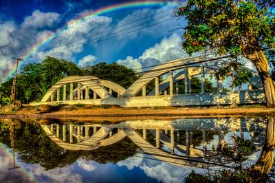 """Quadbow"" - Haleiwa, Oahu"